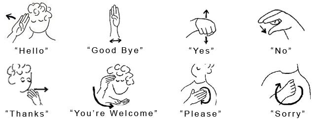 Auslan (Australian Sign Language) - Start ASL