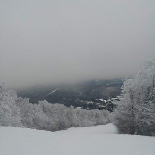 View from Okemo Mountain