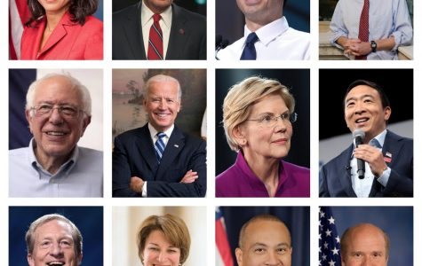 2020 Presidential Election Overview